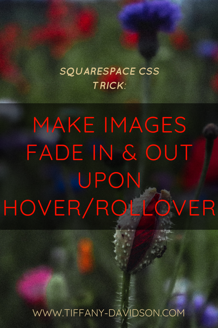 Squarespace CSS Tricks: Make Images Fade In & Out Upon Hover