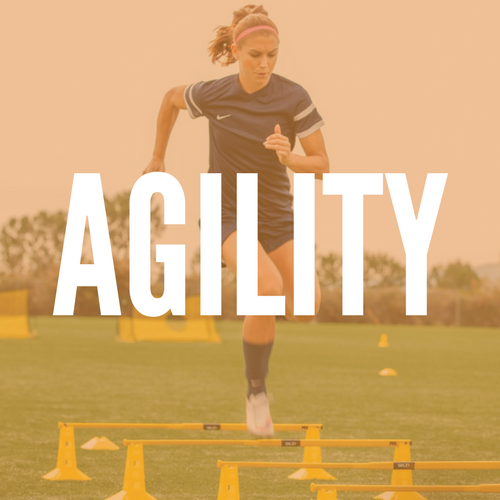 AGILITY (1).png
