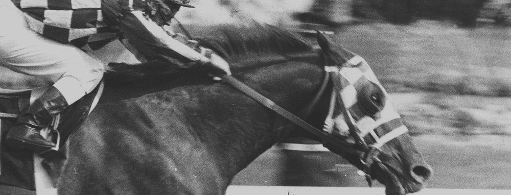 Break_Maiden_Horse_Race.jpg