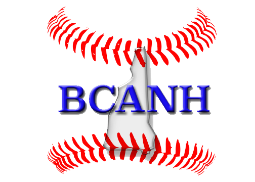 BCANH logo- no background.png