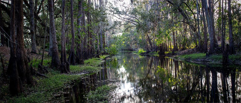 Shingle Creek Trail