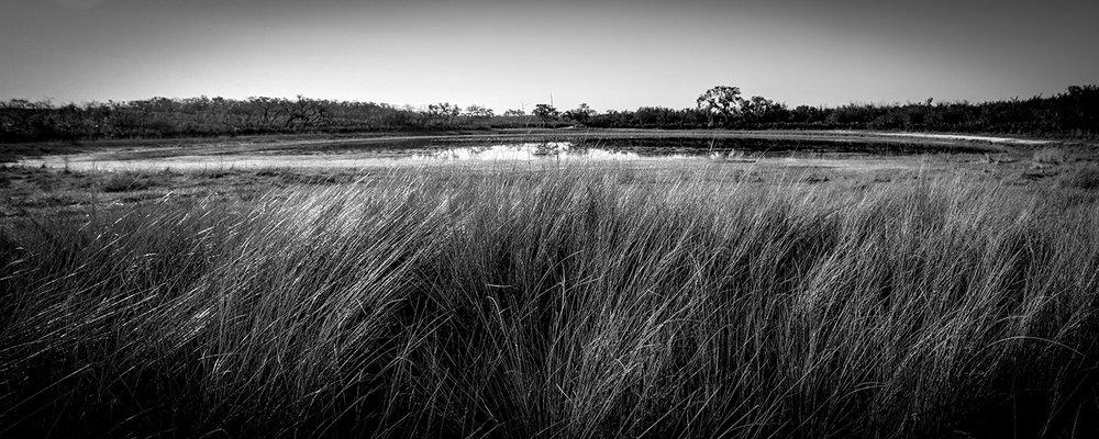 Catfish Creek Preserve