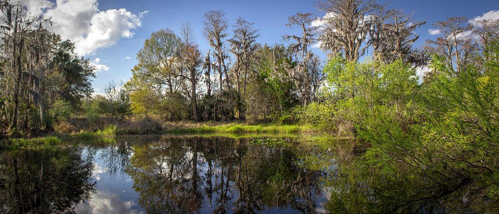 Shingle Creek Regional Park