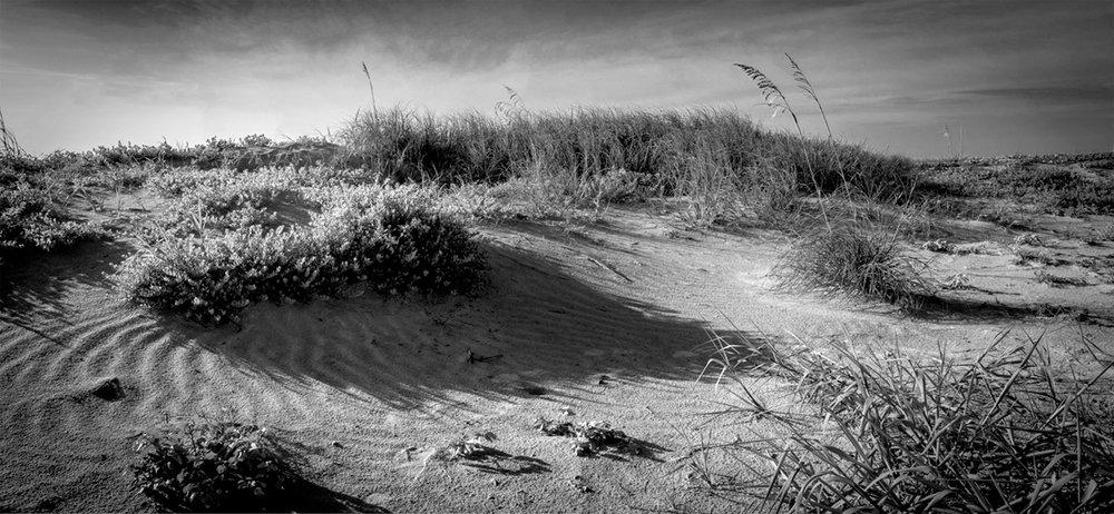 Cape Canaveral Shores