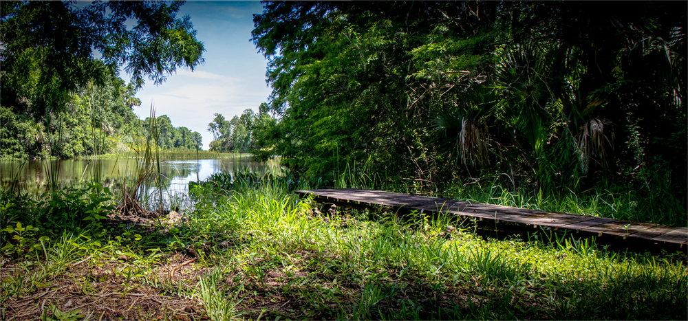 Sherwood L. Stokes Preserve-Polk County