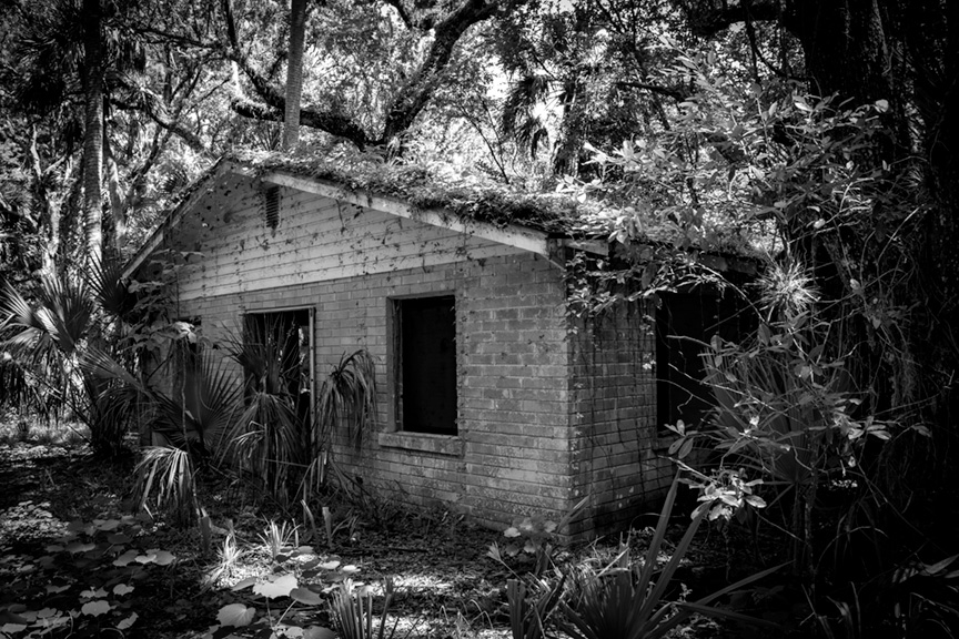 Sherwood L. Stokes Preserve- Polk County