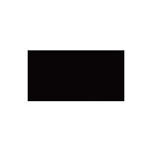 skatelikeagirl_logo.png