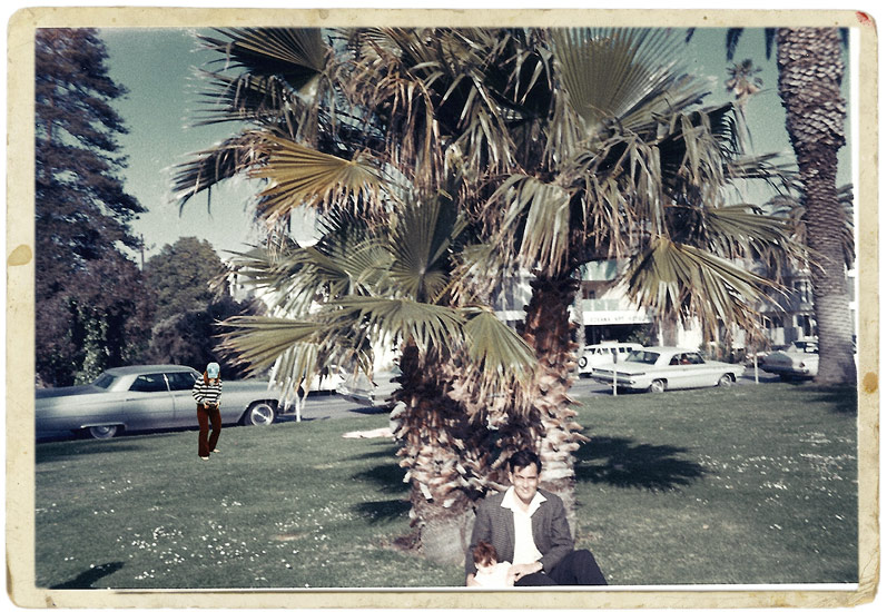 Saudade: Kodak Snaps - Palm Tree