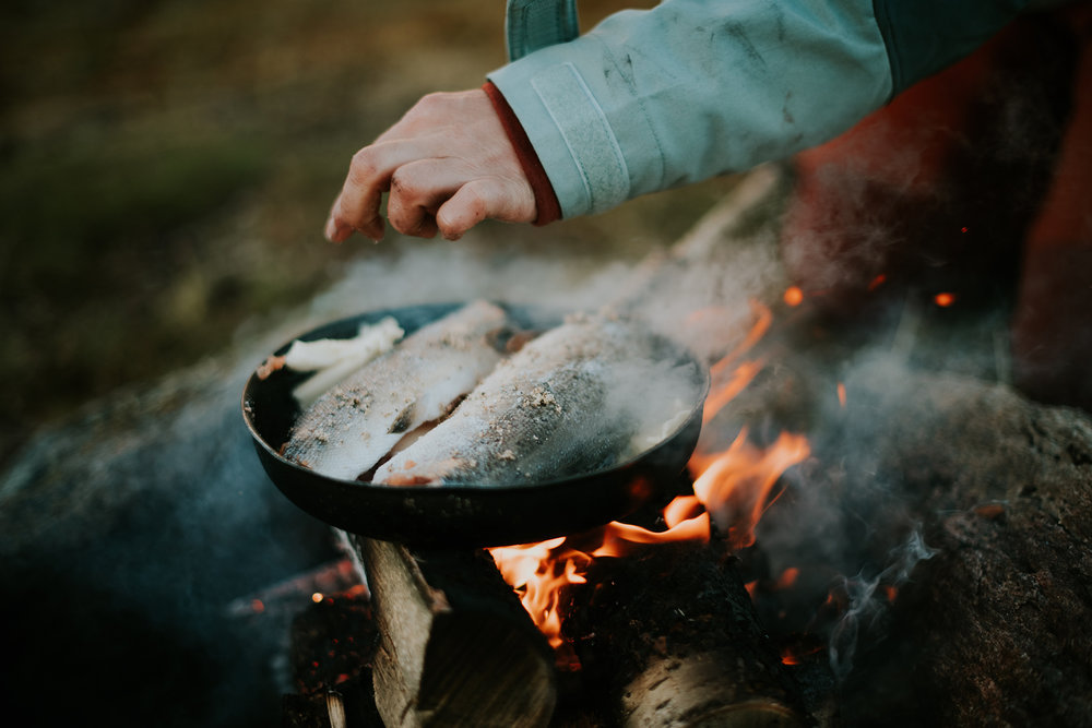 fiske-4.jpg