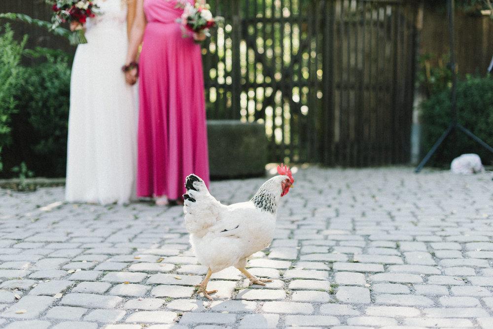 HochzeitFilmkorn194.jpg
