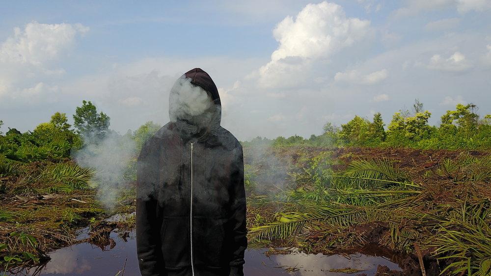 Mark Jenkins Peatland Riau Photo Credit Ernest Zacharevic .JPG