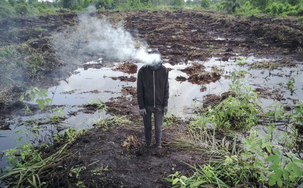 Mark Jenkins Peatlands Riau Photo Credit Ernest Zacharevic .jpg