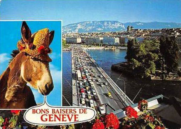 Vintage postcard of Geneva, Bons Basiers de Genève, with to the left a picture of a donkey and to the right a view of the Mont Blanc Bridge and the Salève.