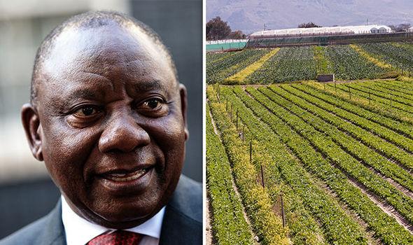 ramaphosa-south-africa-farm-seizures-trump.jpg