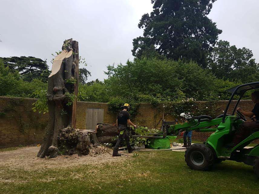 Hollow Lime removal.