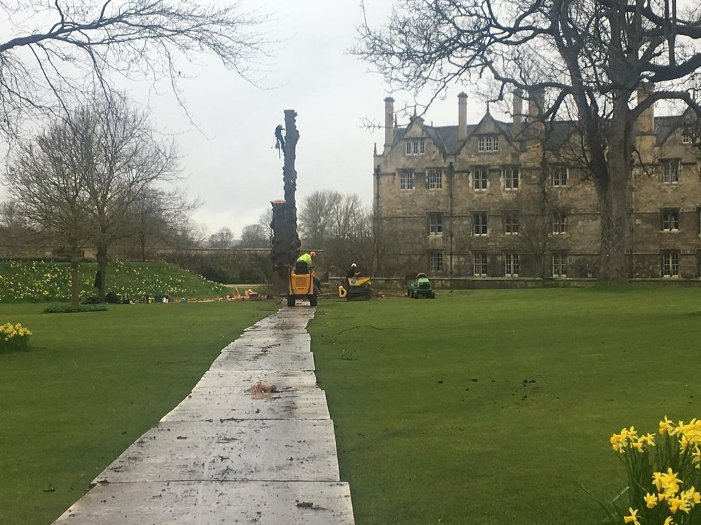Merton College, ground care and works.