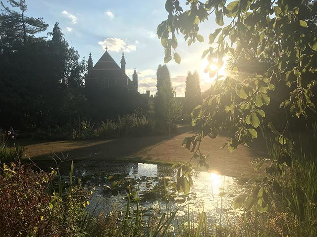 The beautiful Selwyn College hosted us for dinner this evening, and we all relaxed in the gardens before taking the coach home just before sunset! 🌞⛪️🌲 . . . . . . . . . . . . . . . . . . . . #oxfordsummer #oxbridgesummer #selwyncollege #selwyn #summercamp #summerschool #summer2018 #academic