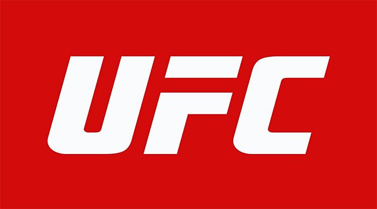 ufc-logo.jpg