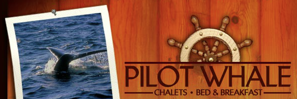 Pilot Whale Chalets - Bed & Breakfast     -