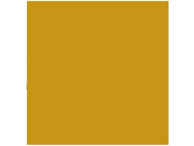 rjf-symbol-vehicles-dk-gold.png