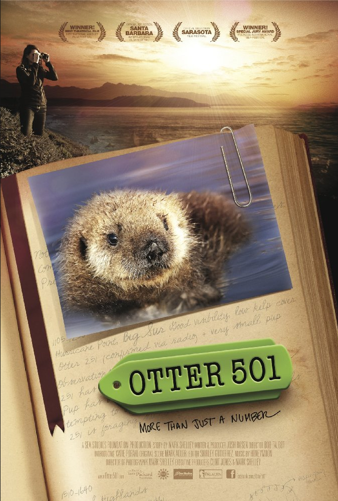 Otter 501 - Effects Editor, Backgrounds