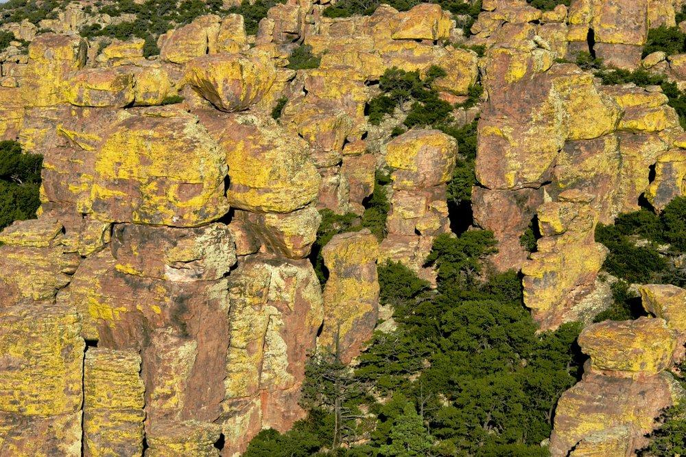 chiricahua-nm-5566.jpg