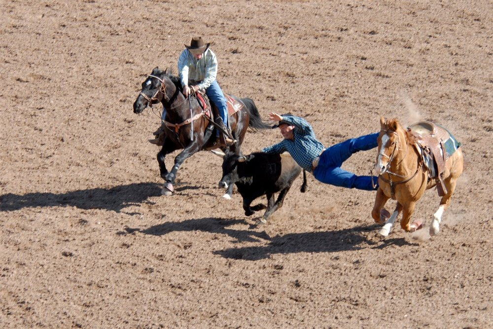 tucson-rodeo022408-1051 (1).jpg
