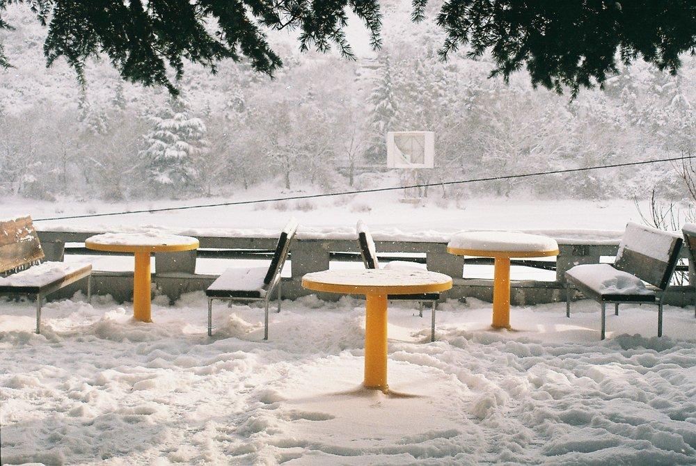 winter 3.JPG