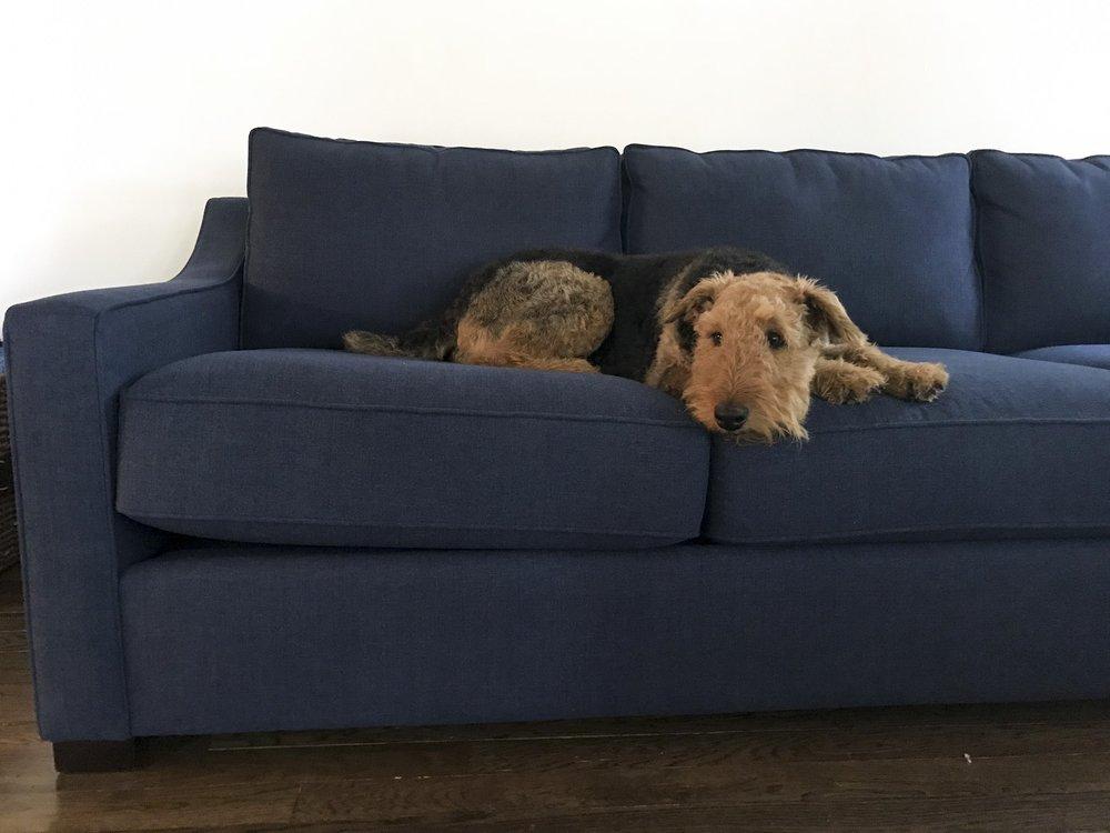 Della couch edited.jpg