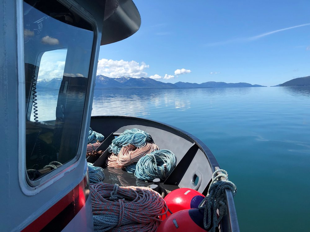 """""""Opening to sea in front of us. One day to get to sea, and two days in open water to get to our fishing spot."""""""