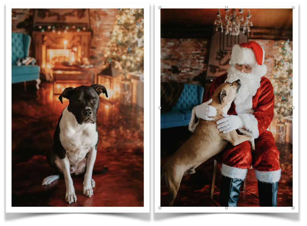 Two Santa Photos.png