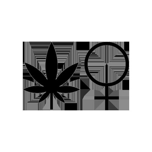 Cannabis Feminist.png