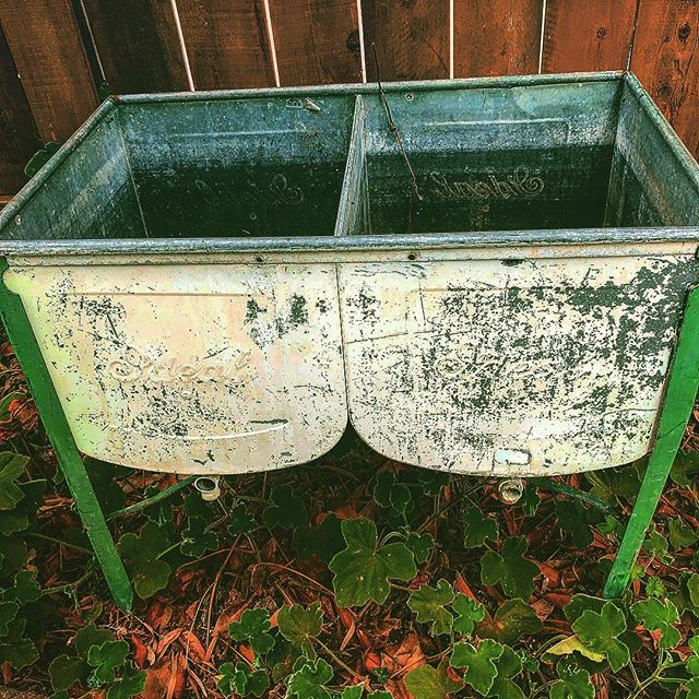 Wash your veggies while you watering your garden! Perfect for outside but this gorgeous double wash stand would also be delightful inside #architecturalsalvagesd #architecturalsalvage #littleitalysandiego #gardening #vintagegarden #farmsink #washyourveggies #gardendesign #vintagestyle #cleaneating #ideal #organicgardening #farmhousestyle #savewater #elizabethbeatsmatt