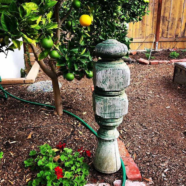 After a century or more of gracing a staircase, a garden is the perfect place for a newel post to start a new life. While proudly adding a bit of delightful charm, it's also busy protecting your plants from getting crushed by a hose #vintagegarden #gardendesign #urbangarden #architecturalsalvagesd #architecturalsalvage #backyardfarm #organicgardening #antiquenewelpost #salvage #growsomethinggreen #jardin #reuse #elizabethbeatsmatt