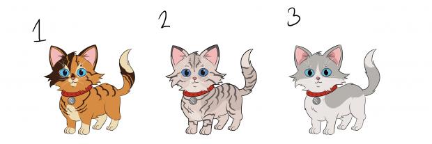 catColour_Kitten.png