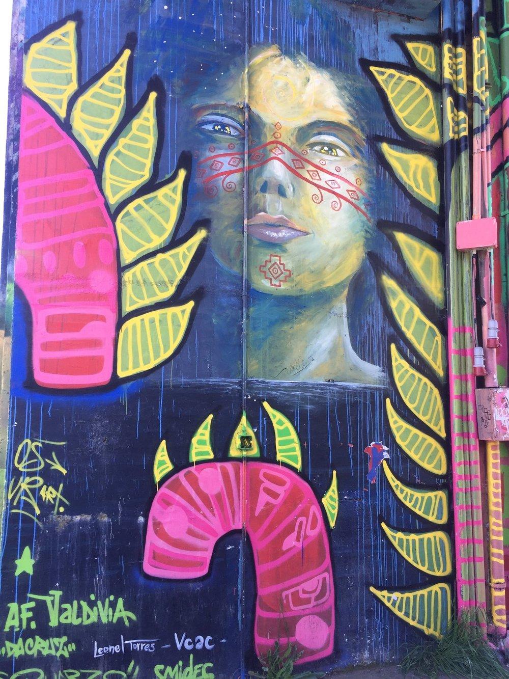 Street art Valdivia, Chile