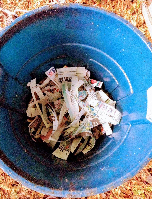 shreddednewspapercompost.jpg