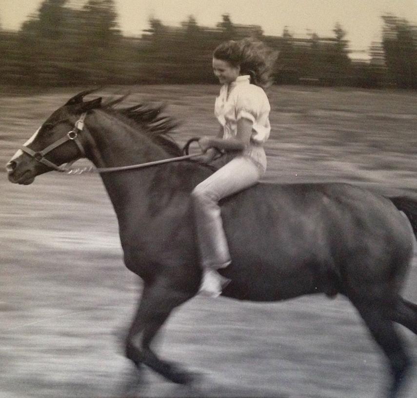 kath-sabine-sunny-space-early-horse.jpg