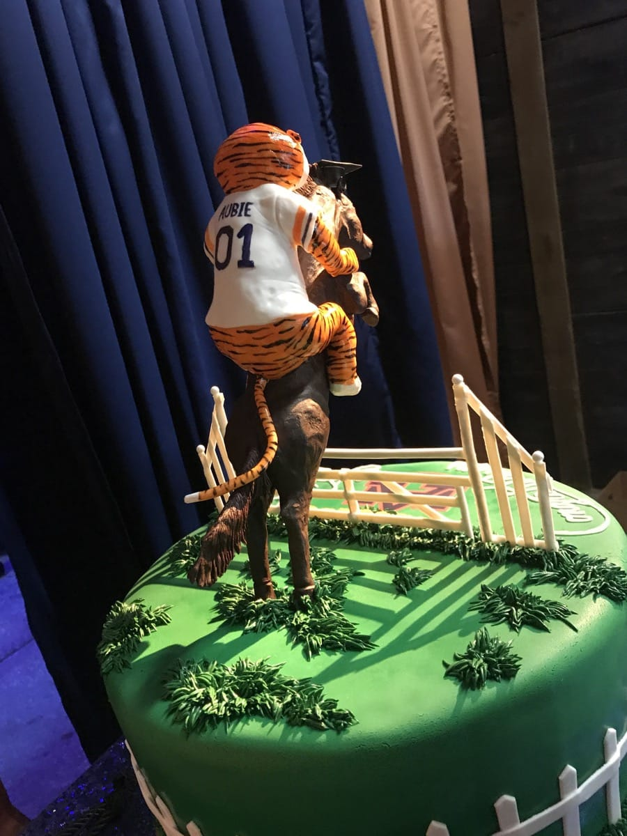 auburn-tiger-riding-chocolate-horse---high-school-graduation-cake---back-09-43-34-285-io.jpg