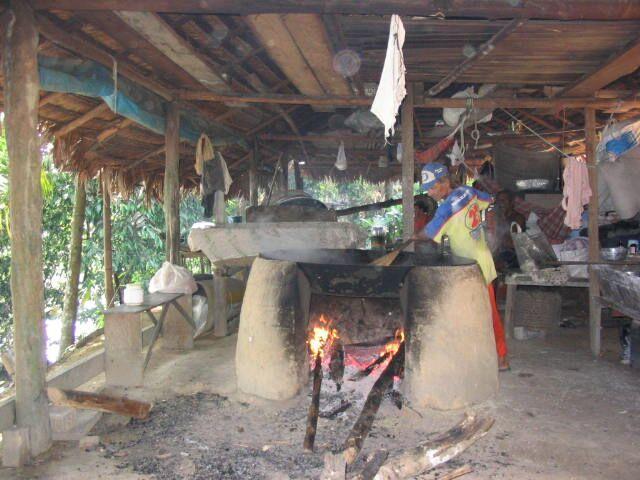 Brazil Amazonas Tour 7.jpg