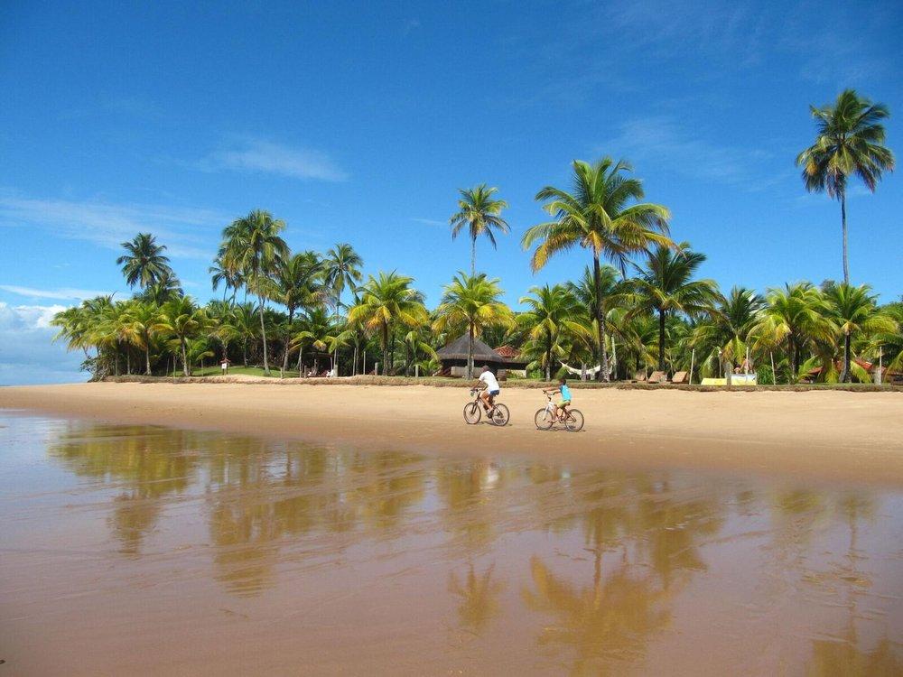 Brazil Cacau coast 5.jpg