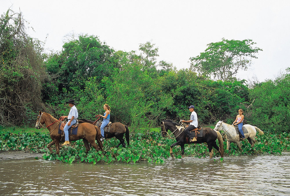 Brazil Bonito Pantanal 2.jpg