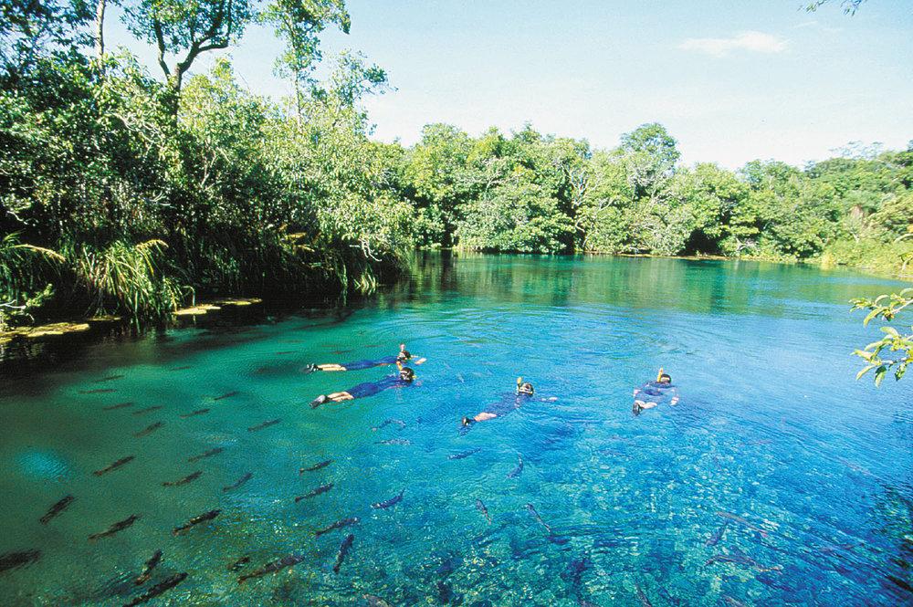 Brazil Bonito Pantanal 4.jpg