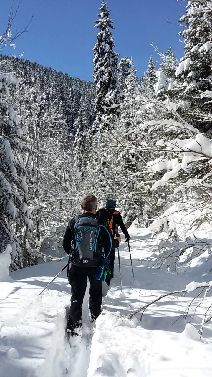 Georgia Svaneti Ski 8.jpg
