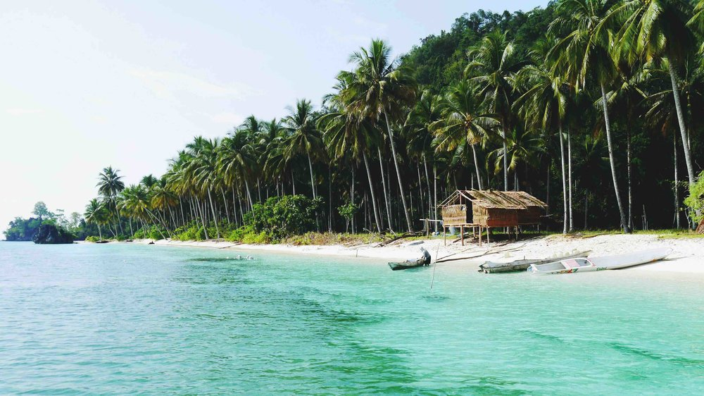 Sulawesi discover south east 4.jpg