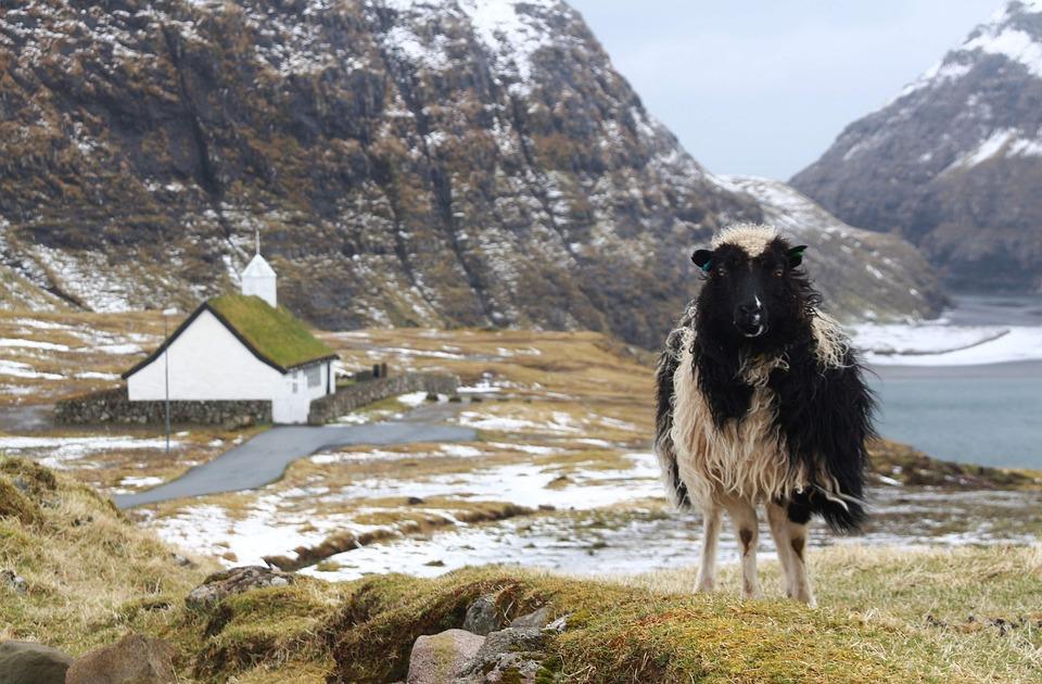 Faroe Islands forside.jpg
