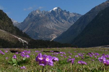 Fjellturer i Himachal
