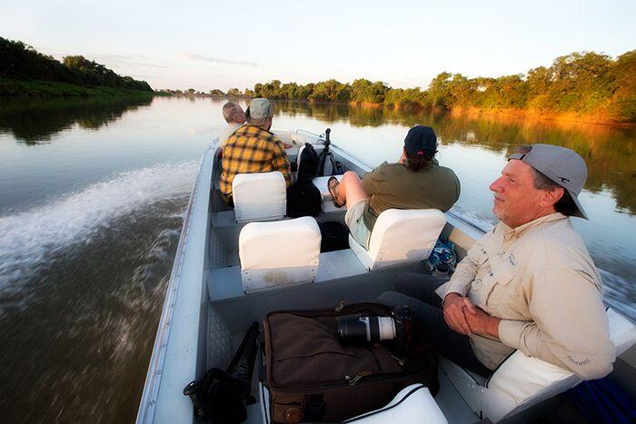Ville dyr i Pantanal