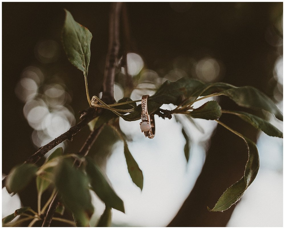 oh deer photography // weddings and films // columbus, ohio