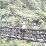 Arangahake Gorge